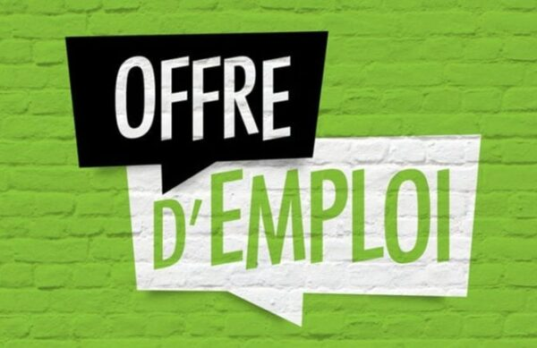 article-offre-emploi-768x434-2